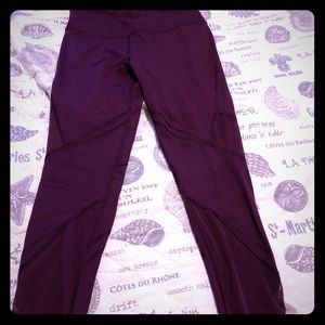 VSX plum mesh knockout tights Victoria's Secret
